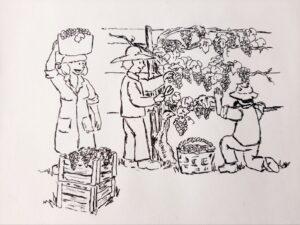 Tekening van Ubel van landbouwers die een druivenstruik aan het oogsten zijn